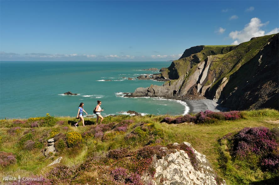 The Informative Way To Discover Cornwall's Countryside