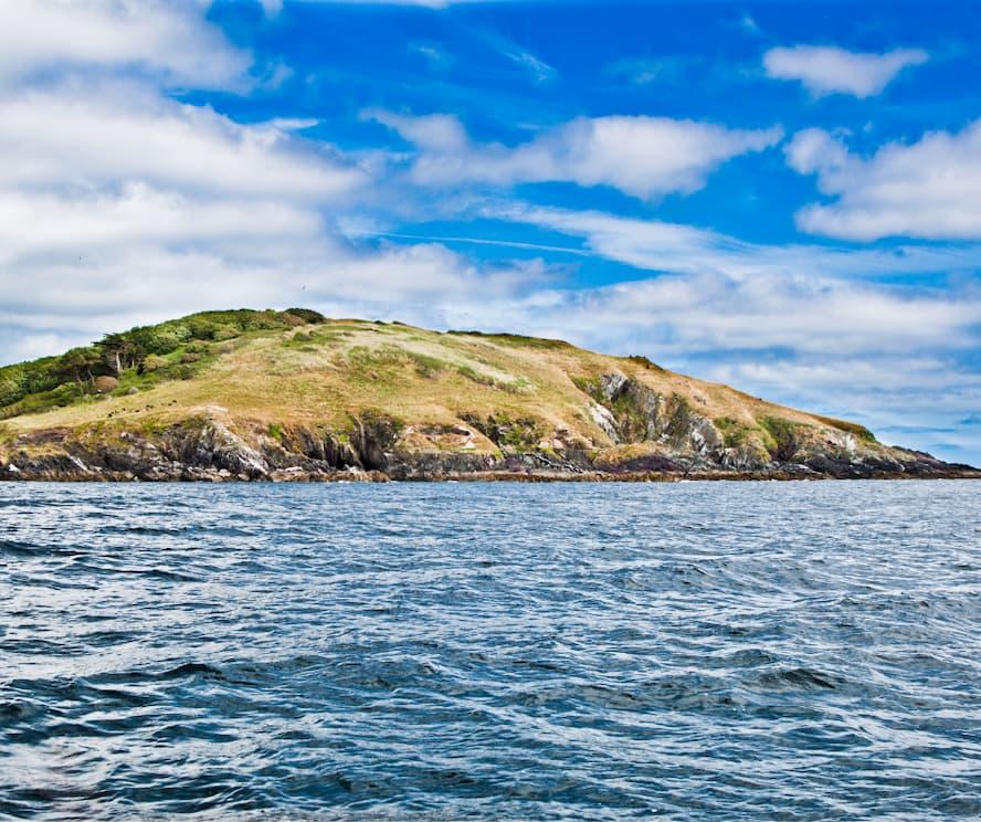 A Vist to Looe Island