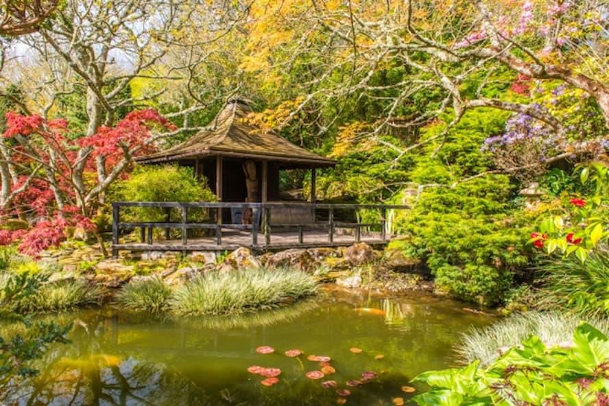 Japanese Garden and Bonsai Centre